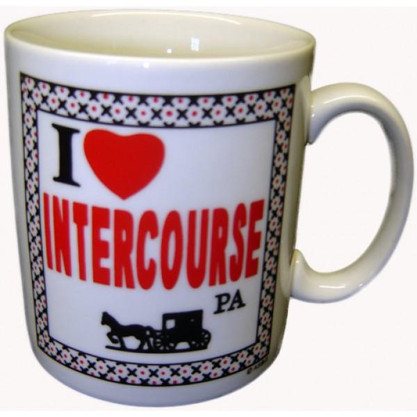 amish mug, i love intercourse pa