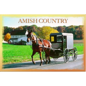 souvenir, playing cards, amish country